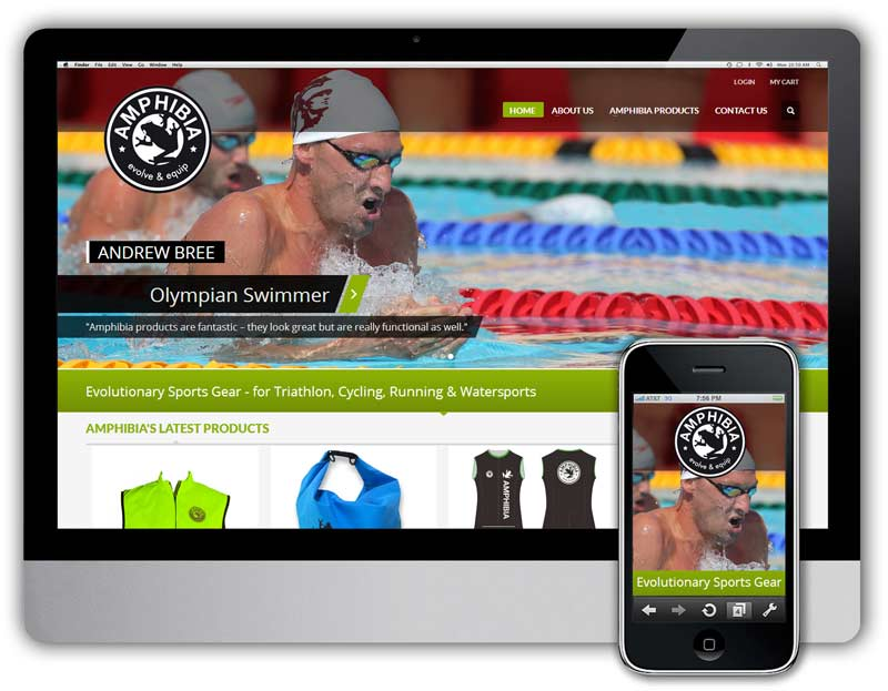 amphibia sports website development
